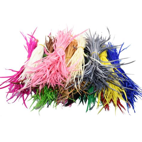 colorful feather colorful indian feathers www imgkid the image kid