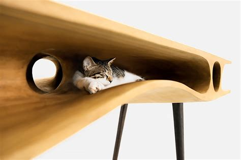 cat table cat table home design