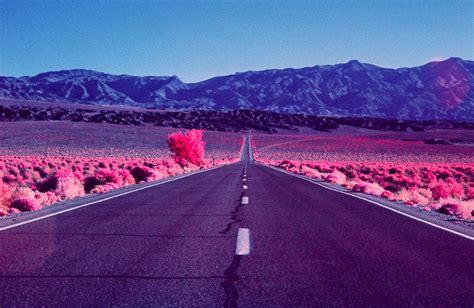 imagenes de paisajes rosas crean incre 237 bles paisajes color rosa con im 225 genes en
