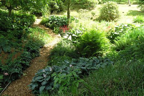 giardino in ombra i colori dell ombra flora 2000