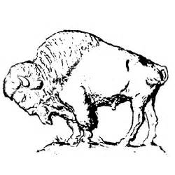 Art Buffalo Bison Drawing Sketch Coloring Page sketch template