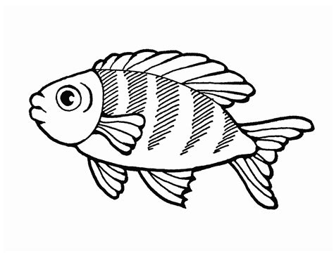 multiple fish coloring page quia class page fishoutline