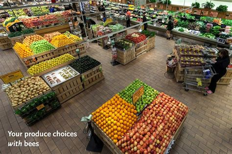 sections of supermarket this is what your grocery store looks like without bees