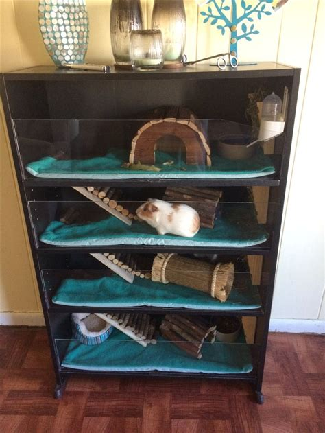 best bedding for guinea pigs best 25 guinea pig bedding ideas on pinterest guinea