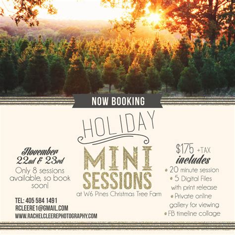 w6 pines christmas tree farm cleere photography mini sessions cleere photography okc photographer