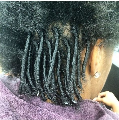 starter locks on shoulder length hair 10 best comb coil starter locs images on pinterest