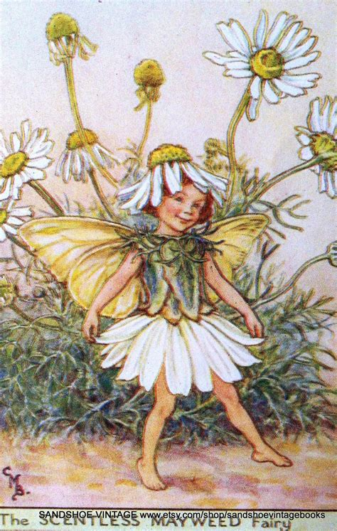 fate dei fiori cicely barker on hold 1930s cicely barker print ideal for framing