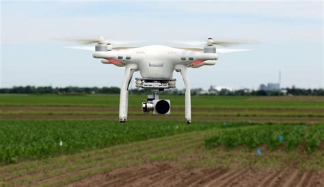 drone w drones are what s next for plant breeders