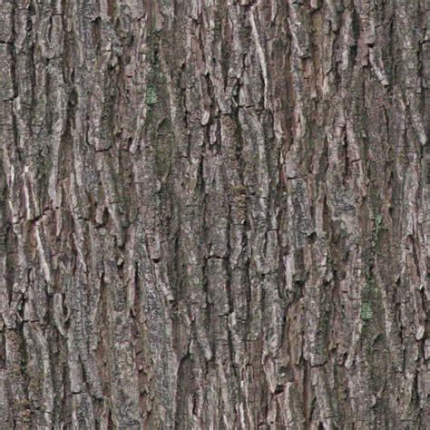 how to paint tree bark texture tree bark texture tree bark png opengameart org