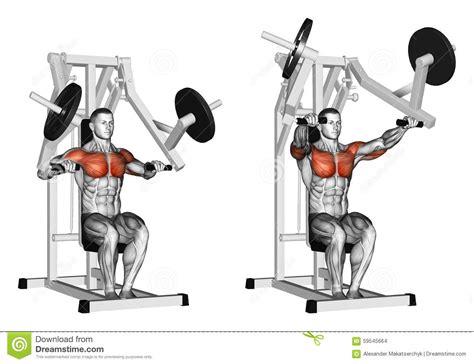 hammer dumbbell bench press exercising press hammer strength gym simulator stock