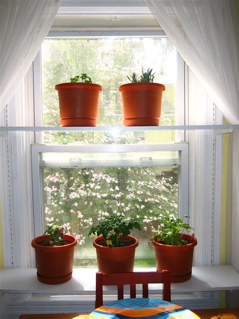 Window Sill Plant Shelf Interior Designs Rooms With Plants