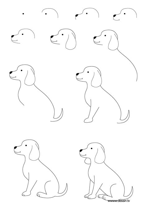 how to draw a puppy drawing puppy