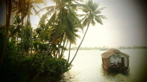 palm beach boat show coupon code palm beach houseboats alleppey use coupon code gt gt festive