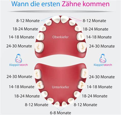 wann 1 zahn wann kommt welcher zahn klapperstorch