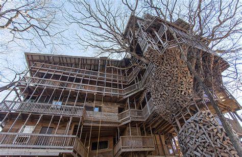 world s biggest house inside the world s biggest tree house13 fubiz media