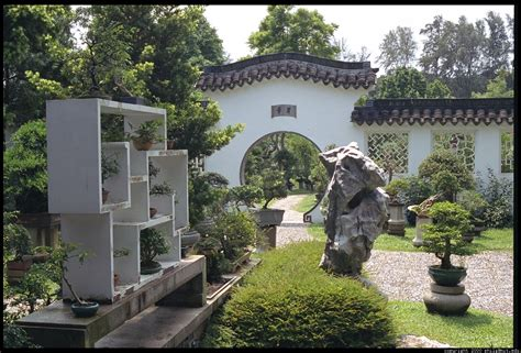 chinese backyard design 1000 images about inspiration japanese chinese gardens on pinterest chinese
