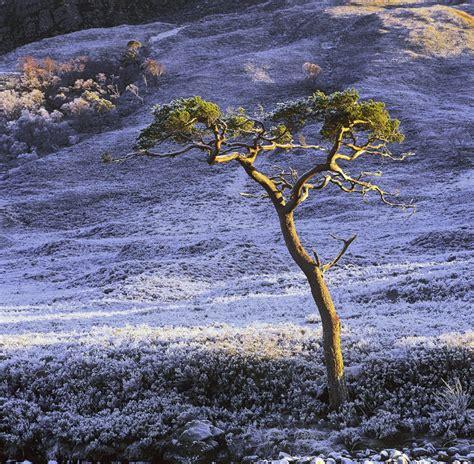 Cold Comfort Mountain cold comfort kinlochewe torridon scotland transient