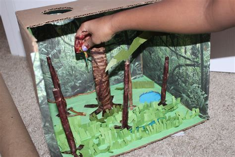 amazon rain forest diorama background and animals girl our rainforest diorama seasons of pink