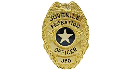 Can You Become A Probation Officer With A Criminal Record How To Become A Probation Officer Education Autos Post