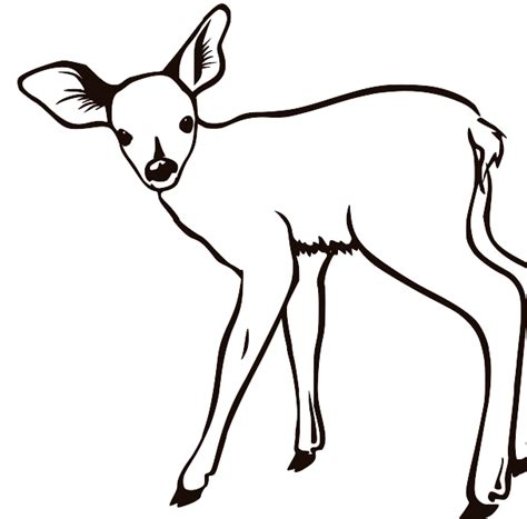 Deer Black And White Clipart buck deer clip cliparts co