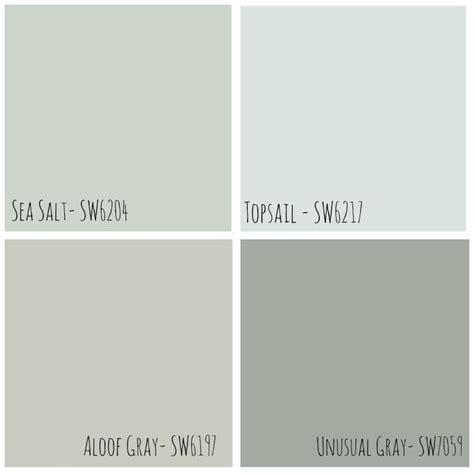 sea salt color neutral grey sherwin williams paint colors color my