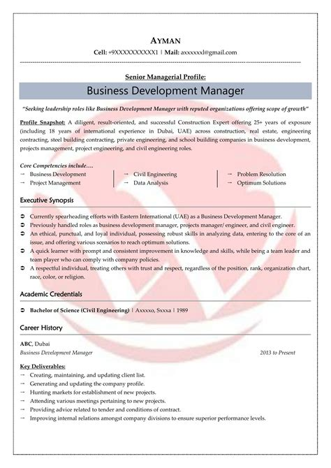 Sle Business Resume business development resume business development