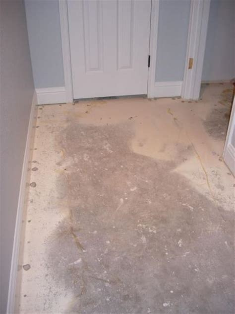 engineered flooring engineered flooring forum