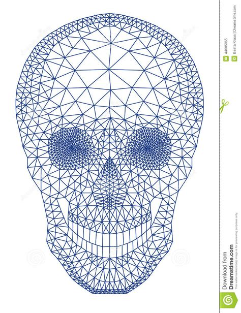 pattern drawing illustrator skull with geometric pattern vector stock vector