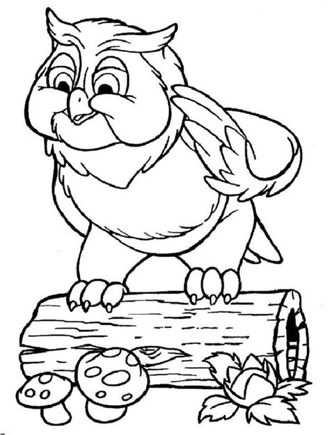 wise owl coloring page bambi coloring pages