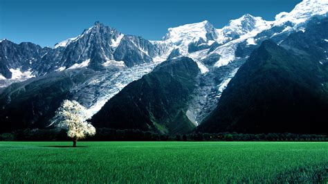 bossons glacier alps snow mountains wallpapers hd