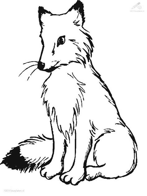 fox a colorier coloring pages