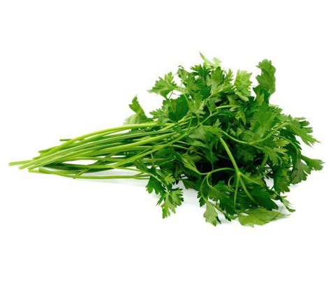 Organic Parsley organic fresh parsley uk in 1bunch from real foods