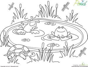 spring coloring pages for middle school pond life coloring page pond life pond and worksheets