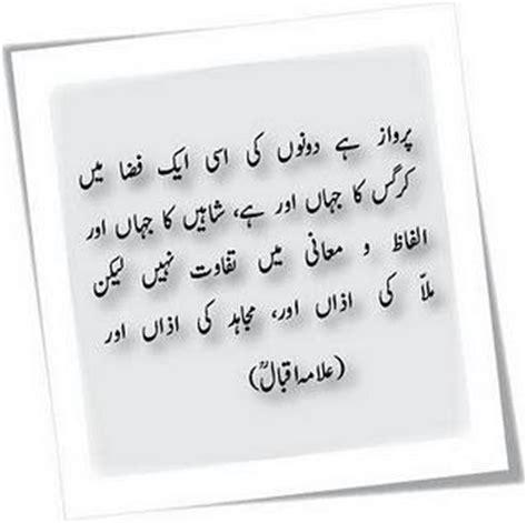 Mera Pasandida Shair Allama Iqbal Essay In Urdu by Urdu Poetry Iqbal