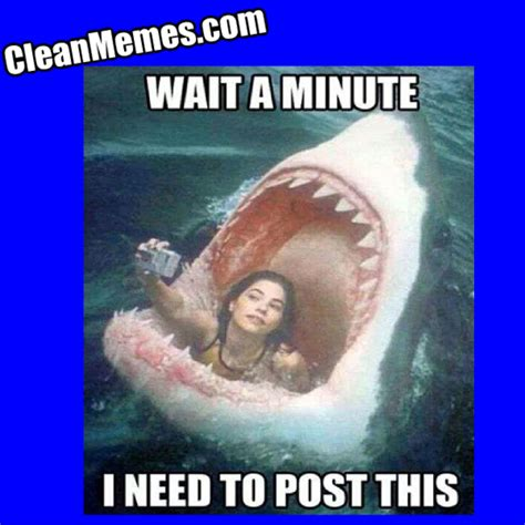 Jaws Meme - photo jaws clean memes the best the most online