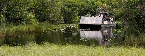 airboat gator park florida airboat rides at gator park everglades airboat
