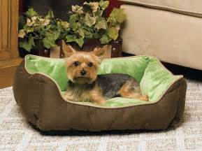 Puppy Beds For Small Dogs The Benefits Of Dog Beds For You And Your Dog