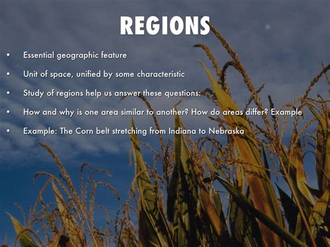 5 themes of geography region five themes of geography by ckasten