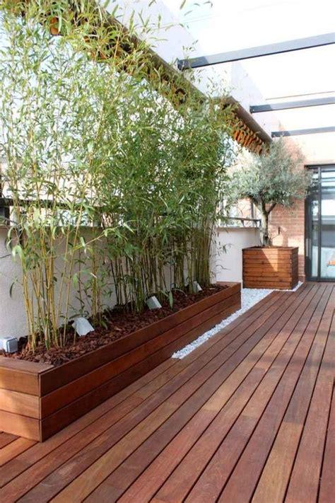 terrasse holz überdachung sichtschutz balkon bambuspflanzen holz terrasse verglasung