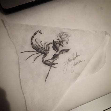 small black and white scorpion with huge rose flower