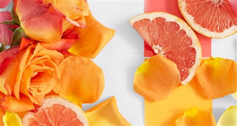 Home Decor Trends For Summer 2015 what is the history and meaning of orange roses