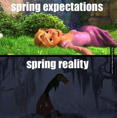 Funny Spring Memes - spring thaw timotheories march 2017 timotheories