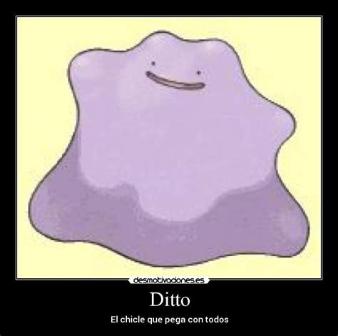 Ditto Memes - pin ditto memes 11 results on pinterest