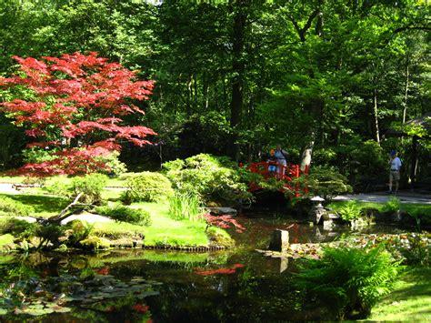 eeden s tuinen bestand japanse tuin clingendael jpg wikipedia