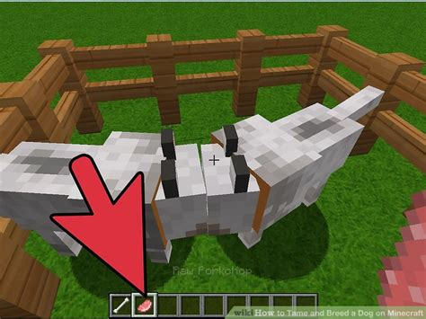 can you breed and dogs can you breed dogs on minecraft xbox 360 edition portalideas
