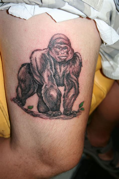 gorilla tattoos designs ideas and meaning tattoos for you