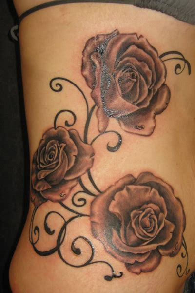 rose tattoo mp3 download paw print temporary designs with