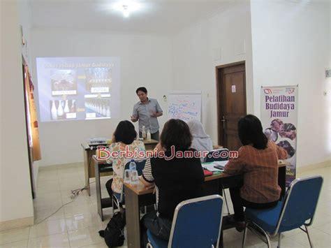 Bibit Jamur Tiram Semarang budidaya jamur tiram bersama mompreneur
