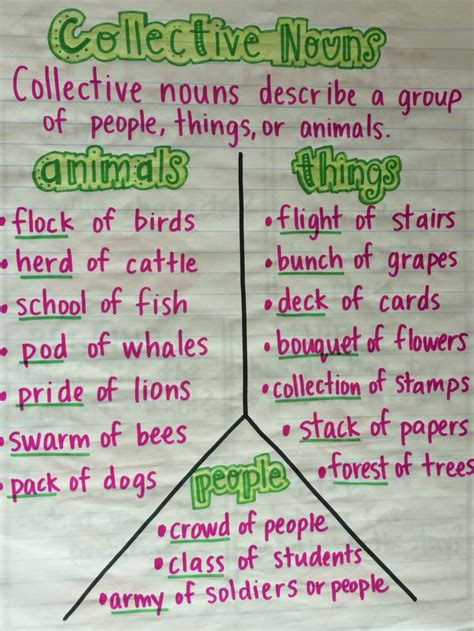 lots of fun meaning best 20 collective nouns ideas on pinterest groups of
