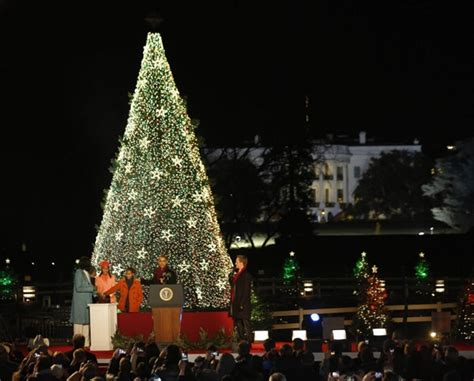 the tradition of the white house tree lighting ceremony